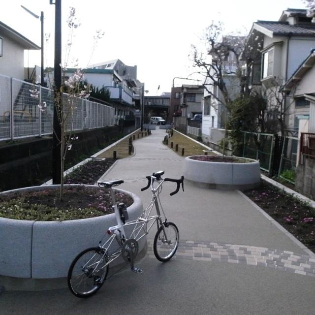 北沢川緑道:AM-GT